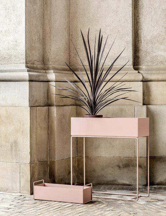 Ferm Living Plant box rose